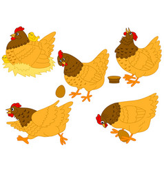 set hens chickens and eggs vector image