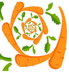 background with orange carrots on a white vector image