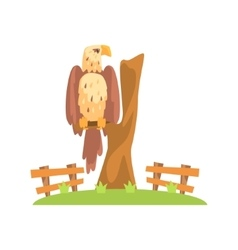 Bald american eagle sitting on tree branch in open vector