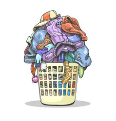 Clothes laundry basket vector