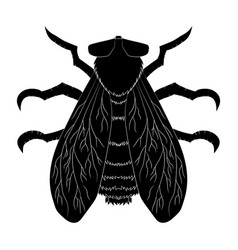insect silhouettefly musca domestica insect vector image