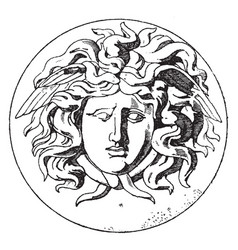 Medallion medusa head is a french design vintage vector