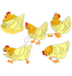 Set of hens and chickens vector