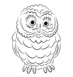 cartoon image of owl vector image