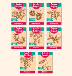 disocunt price tags for farm berries vector image vector image