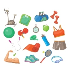 Sports Accessories Set vector image