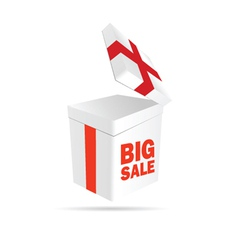 Big sale sign on package color vector