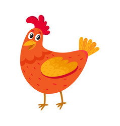 Funny cartoon red chicken hen standing and vector