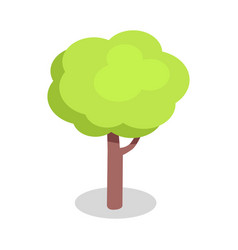 green tree with bushy crown and brown trunk vector image