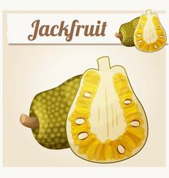 Jackfruit cartoon icon vector