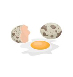 Raw quail egg on a white vector