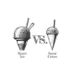 shaved snow and shaved ice vector image