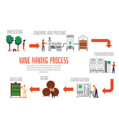 Wine making process banner template - set steps vector