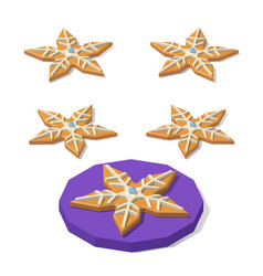 christmas cookie of star shape vector image vector image