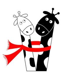 Cute cartoon black white giraffe wearing red scarf vector image vector image