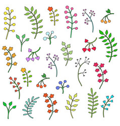 floral collection with leaves and flowers vector image vector image