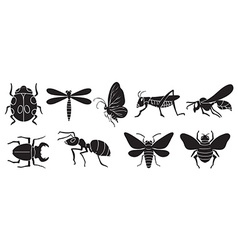 A group of insects vector
