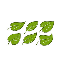 abstract green leaf logo nature symbol or icon vector image