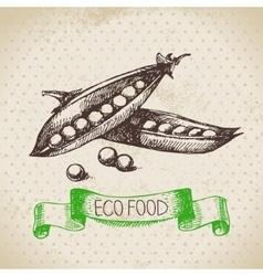 Hand drawn sketch peas vegetable Eco food vector