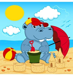 hippo on beach vector image