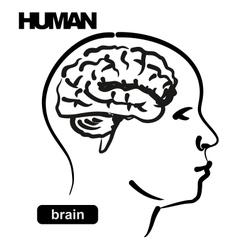 human vector image