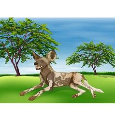 Hyaena vector image
