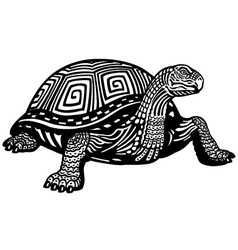 turtle black white vector image vector image