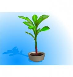 Flower bush vector