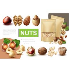 Realistic healthy nuts composition vector