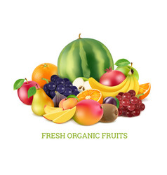 set of various fresh fruits isolate on white vector image