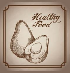hand drawn avocado healthy food fresh vector image