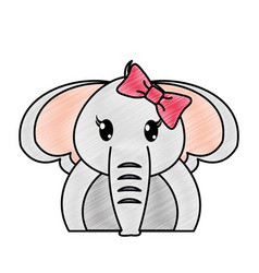 grated adorable female elephant cute animal vector image