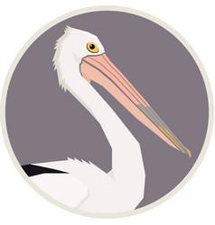 australian pelican bird round frame vector image