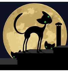 black cat on roof vector image