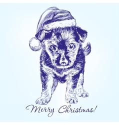 Christmas puppy in Santa stocking hat hand drawn vector image