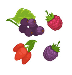 Fresh berries set on white poster in vector