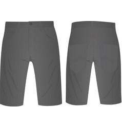 Gray shorts vector
