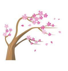 Sakura tree with pink flowers vector