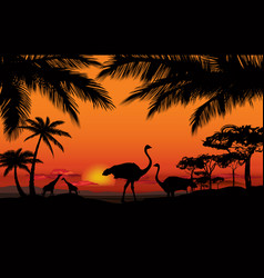 African animal landscape savanna nature sunset vector