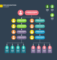 Business organizational structure vector