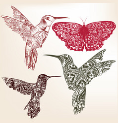 Collection hummingbirds from ornament vector