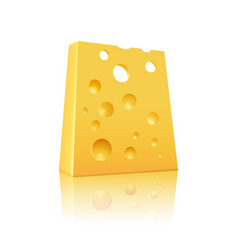 Icon of cheese vector