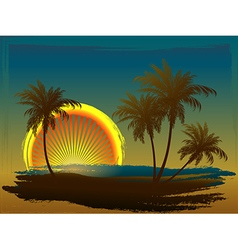 Palm trees in the sun vector image