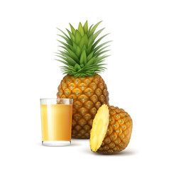 ripe whole and sliced pineapple with glass ofjuice vector image