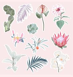set stickers with flowers and leaves vector image