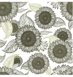 sunflower vintage seamless pattern sunflower vector image