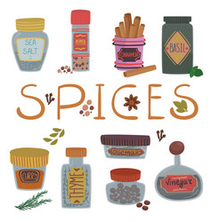 various spices and herbs set cinnamon basil vector image