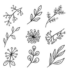 set of branch silhouettes vector image vector image