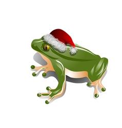 christmas frog vector image vector image