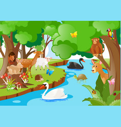 Forest scene with many types of animals vector